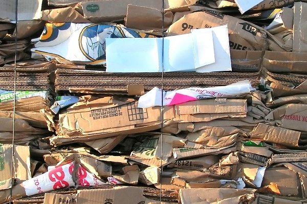 Cardboard Baling Or Bundling?