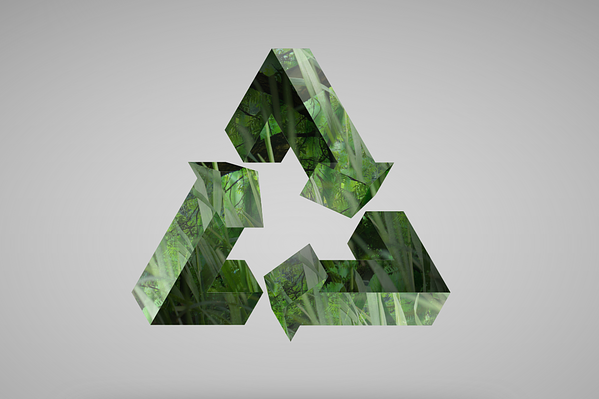 Avoid These Common Recycling Mistakes