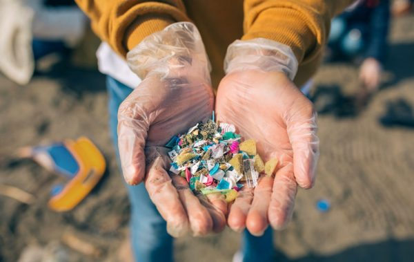 iSustain teams up with TN Aquarium for microplastics research, and to keep plastic pollution out of our rivers, lakes, and oceans.