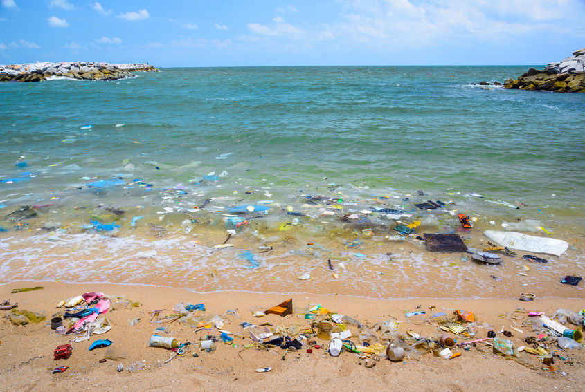 The recycling experts at iSustain support companies like 4ocean in the crusade to reverse the damage the plastics crisis inflicts on mother Earth.
