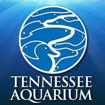 iSustain strikes up partnership to aid the TN Aquarium in their microplastics research efforts.