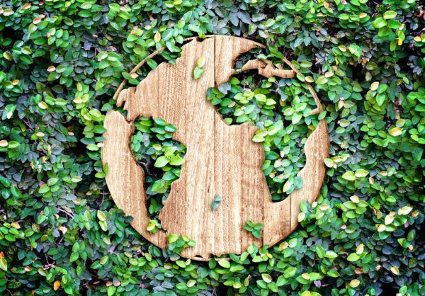 Sustainability and eco-minded business tactics are paramount to reversing the havoc wreaked on our natural resources and our planet.